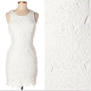 ASTR lace dress. NWOT. SMALL